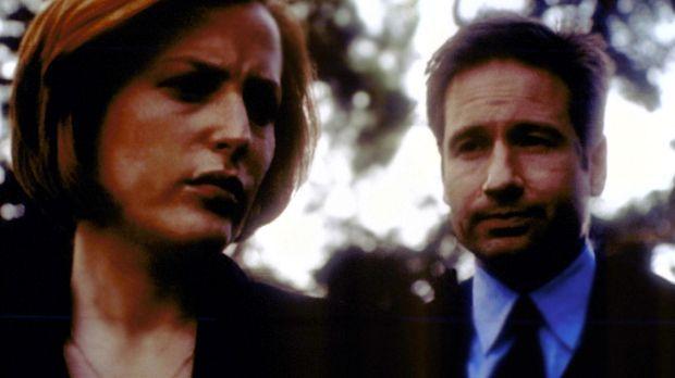 Scully (Gillian Anderson, l.) und Mulder (David Duchovny, r.) suchen nach ein...