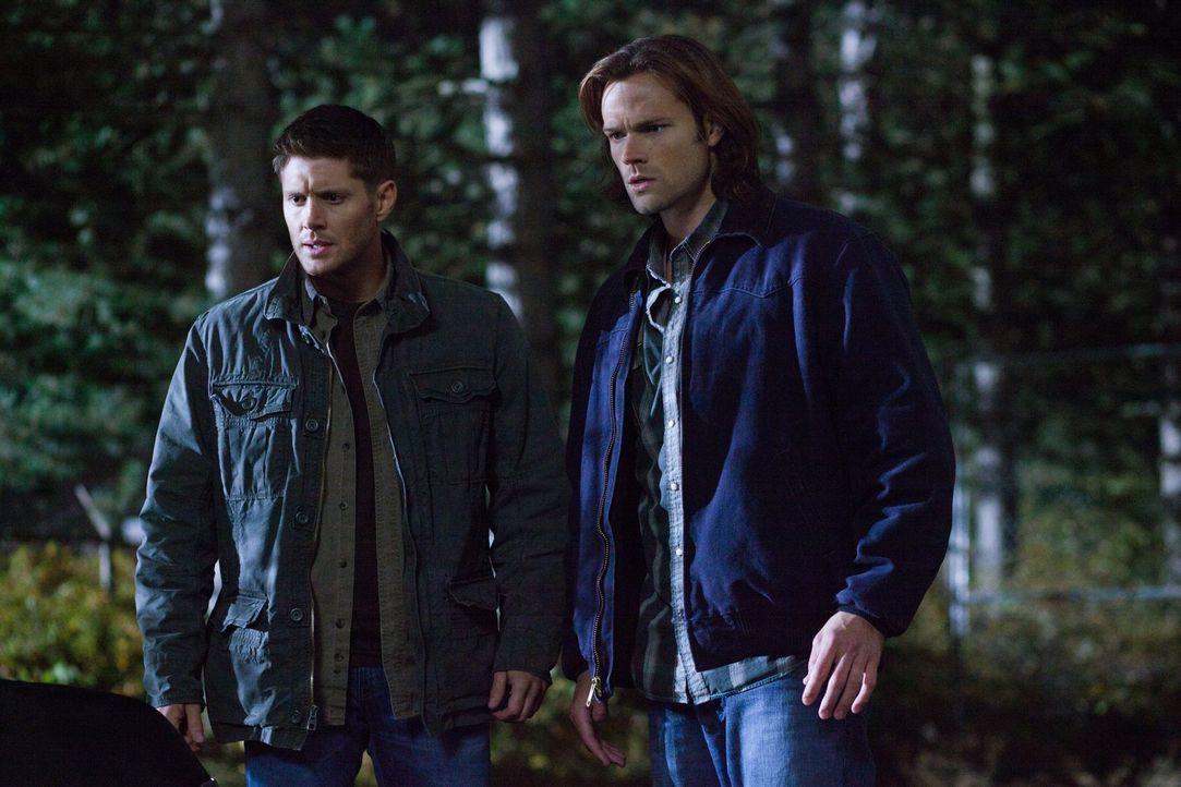 Die neuesten Ereignisse treiben Sam (Jared Padalecki, r.) und Dean (Jensen Ackles, l.) immer weiter auseinander. Und gerade jetzt soll Sam eine lebe... - Bildquelle: Warner Bros. Television