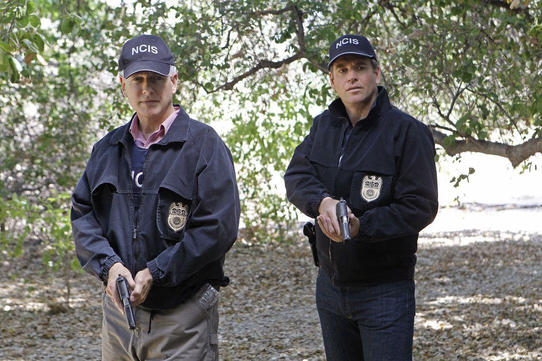 Versuchen, einem Mord aufzudecken: Gibbs (Mark Harmon, l.) Und Tony (Michael Weatherly, r.) ... - Bildquelle: CBS Television