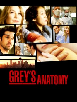 Grey's Anatomy - (2. Staffel) - Im Seattle Grace Hospital geht es drunter und...