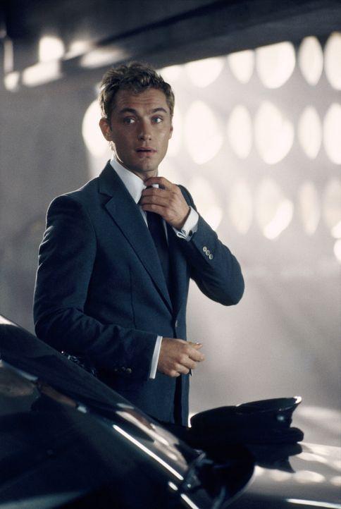 Der stylische Beau Alfie (Jude Law) verdient seinen Lebensunterhalt in New York als Chauffeur. Er liebt das Leben, er liebt die Frauen, aber ganz be... - Bildquelle: Paramount Pictures