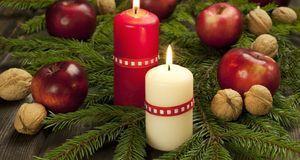 Nicht nur Vitaminbombe, sondern auch toller Adventskranz- oder Weihnachtsbaum...