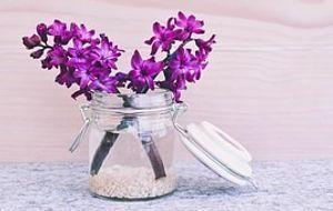 Marmeladenglas-Blume