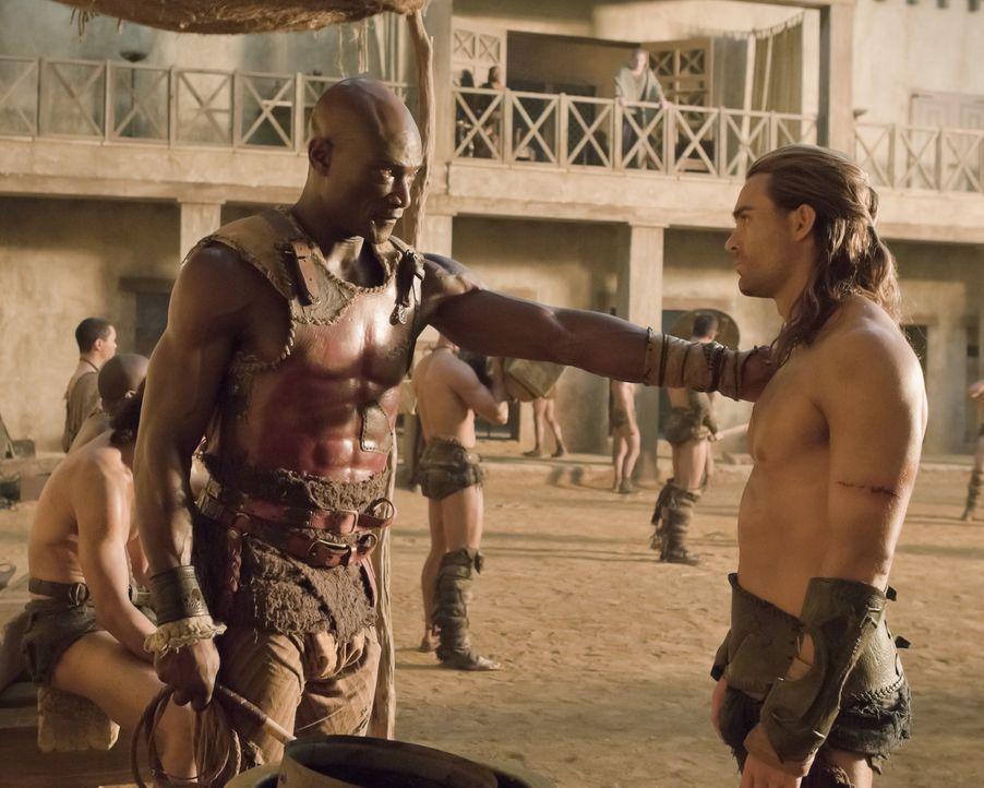 Müssen einen schrecklichen Verlust hinnehmen: Gannicus (Dustin Clare, r.) und Drago (Peter Mensah, l.) ... - Bildquelle: 2010 Starz Entertainment, LLC