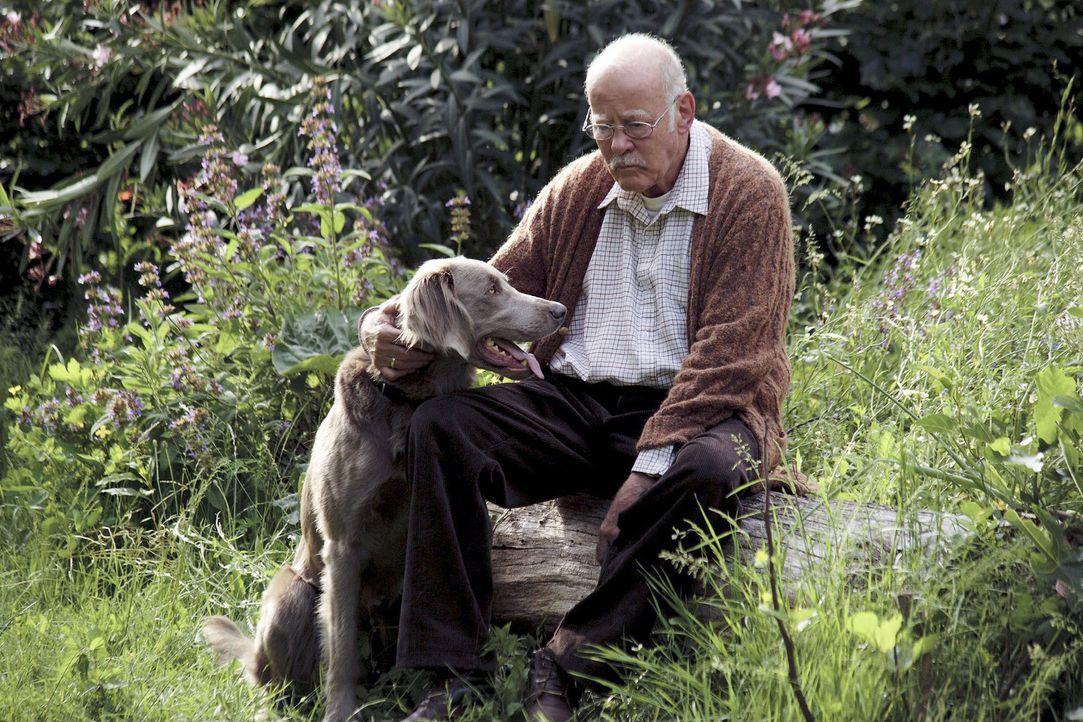 Der plötzliche Tod seiner Frau Marlies bringt das Leben von Hubert Herrlich (Joost Siedhoff) vollkommen durcheinander. Nur sein Hund Herkules spende... - Bildquelle: Christian Hartmann Sat.1