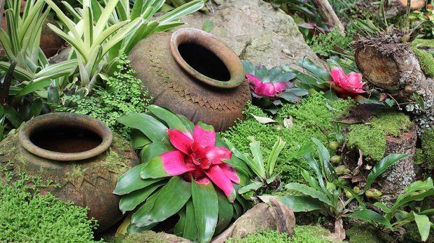 Kleiner Garten: Gestaltungsideen - Sat.1 Ratgeber
