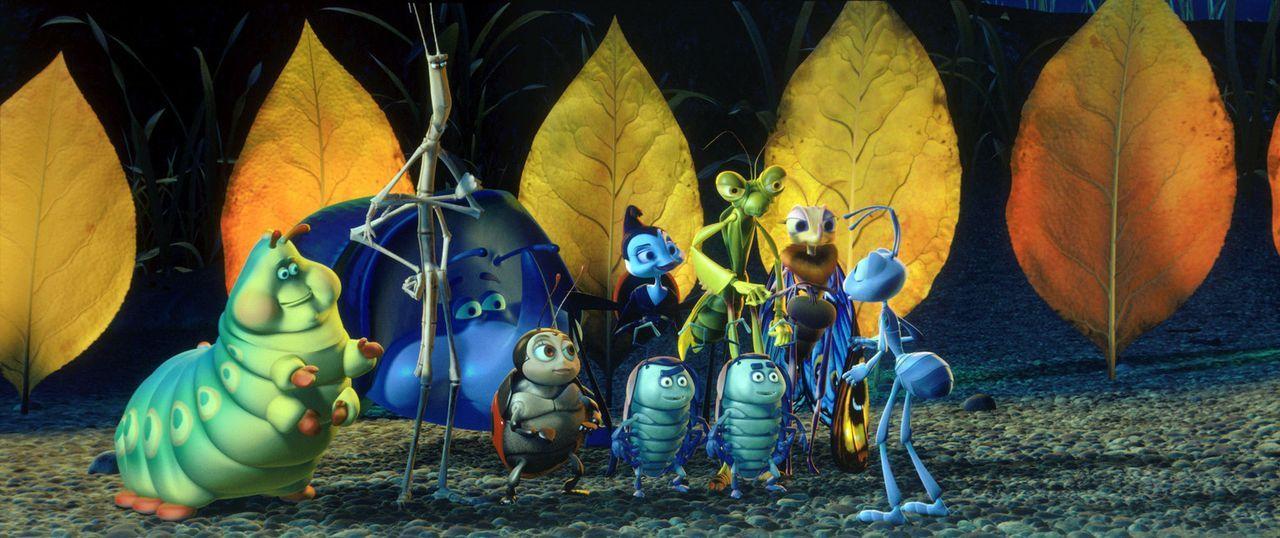 Der tollpatschige Flik (r.) weiß nicht so recht, was er von dem maroden Insektenzirkus halten soll. Und diese Truppe soll ihn im Kampf gegen den ge... - Bildquelle: Disney/Pixar