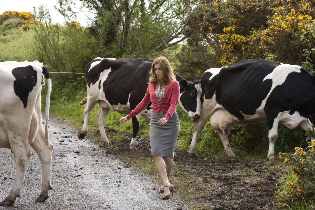 Auf ihrem Weg nach Dublin bleibt Anna Brady (Amy Adams) nichts erspart ... - Bildquelle: 2010 Universal Studios