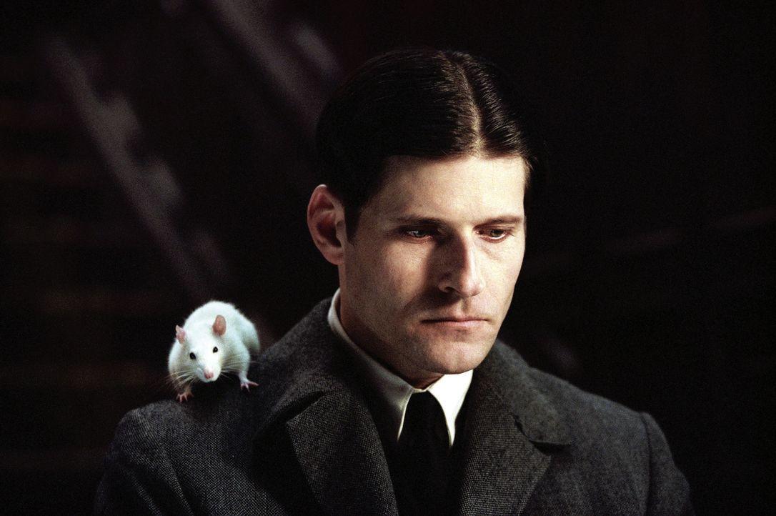 Seine einzigen Freunde sind Cathryn, eine neue Angestellte im Büro, und das Rattenpaar Ben und Sokrates, das er zu Hause aufzieht. Als eine seiner... - Bildquelle: Warner Bros. GmbH
