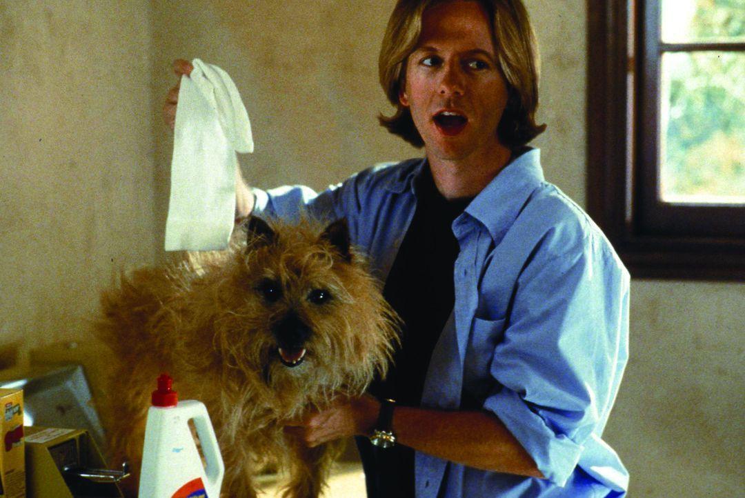 Dylan Ramseys (David Spade) Plan, den Hund seiner Nachbarin zu entführen, um bei ihr landen zu können, geht gewaltig in die Hose ... - Bildquelle: Warner Brothers