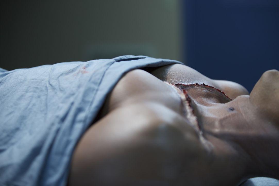 Was kann die Leiche über ihren Mörder verraten? Lieutenant Joe Kenda hat in dieser Folge eines der abscheulichsten Verbrechen seiner Karriere zu lös... - Bildquelle: Jupiter Entertainmentt