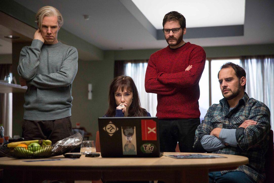 Eine einzige Internetseite lässt das Leben von (v.l.n.r.) Julian (Benedict Cumberbatch), Birgitta (Carice van Houten), Daniel (Daniel Brühl) und Mar... - Bildquelle: 2013 - DreamWorks II Distribution Co., LLC. All Rights Reserved.