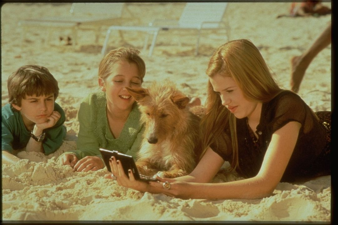 Zeus ist immer mitten im Geschehen: Jordan Barnett (Miko Hughesli.), Judith (Majandra Delfino, r.) und Nora Dunhill (Jessica Howell, M.) ...