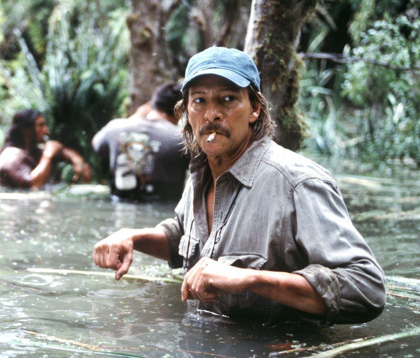Orchideenwilderer John Laroche (Chris Copper) ist eigentlich an der derzeitigen Misere von Drehbuchautor Charlie Kaufmann schuld. Charlie ist nicht... - Bildquelle: 2003 Sony Pictures Television International