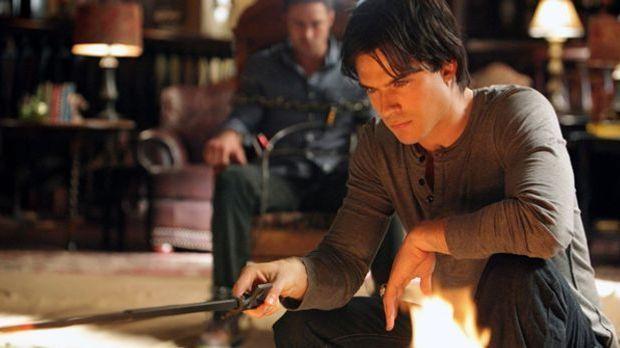 Vampire Diaries: Das Lexikon zur Vampir-Serie