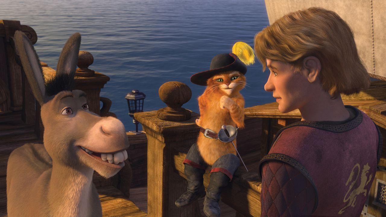 Shrek begibt sich mit Esel und dem Gestiefelten Kater auf die Suche nach dem königlichen Nachfolger für Weit Weit Weg: Artie (r.), der in dem großen... - Bildquelle: TM &   2007 Dreamworks Animation LLC