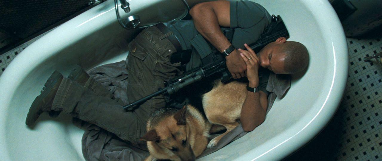 Sie jagen bei Tag und verstecken sich in der Nacht: Dr. Robert Neville (Will Smith) und sein Schäferhund sind die mutmaßlich einzigen Überlebenden e... - Bildquelle: Warner Brothers International
