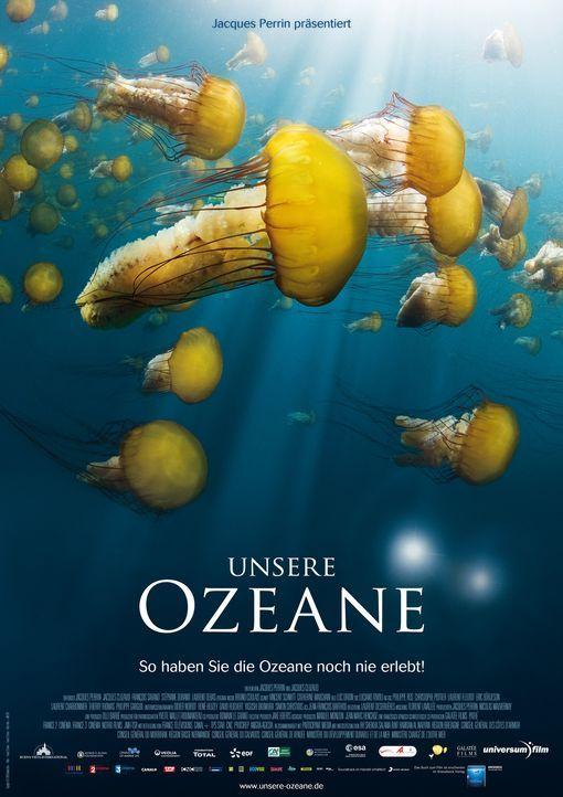 """Die Dokumentation """"Unsere Ozeane"""" entführt in die Tiefen der fünf Weltmeere. - Bildquelle: Universum Film"""