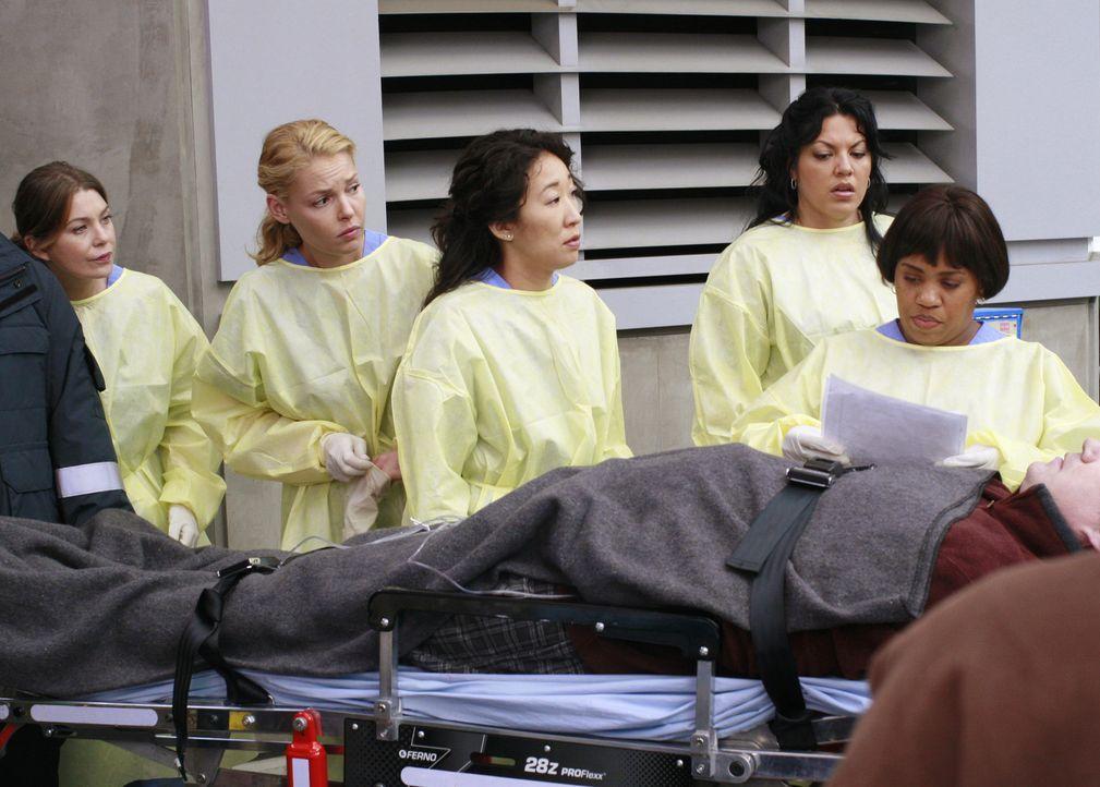 Nehmen einen neuen Patienten entgegen: Izzie (Katherine Heigl, 2.v.l.), Cristina (Sandra Oh, M.), Meredith (Ellen Pompeo, l.), Callie (Sara Ramierez... - Bildquelle: Touchstone Television