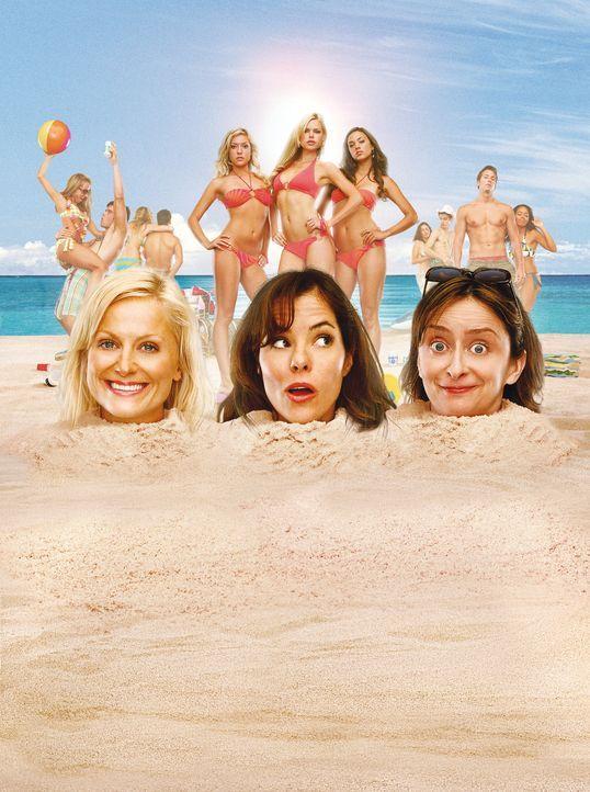 SPRING BREAKDOWN - Artwork - Die drei Freundinnen (v.l.n.r.) Gayle (Amy Poehler), Becky (Parker Posey) und Judi (Rachel Dratch) verbringen ihre Feri... - Bildquelle: Warner Bros.