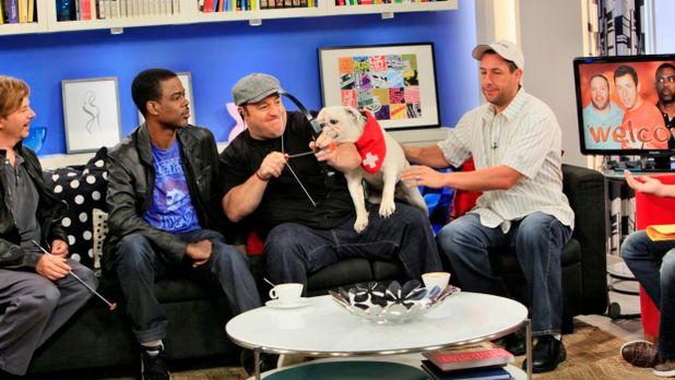 Sat.1 Frühstücksfernsehen - fruehstuecksfernsehen-studiohund-lotte-in-action-...