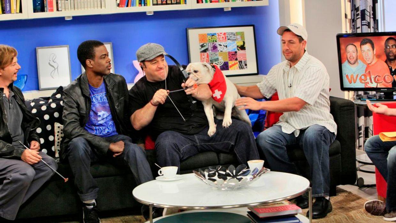 fruehstuecksfernsehen-studiohund-lotte-in-action-im-studio-072 - Bildquelle: Ingo Gauss