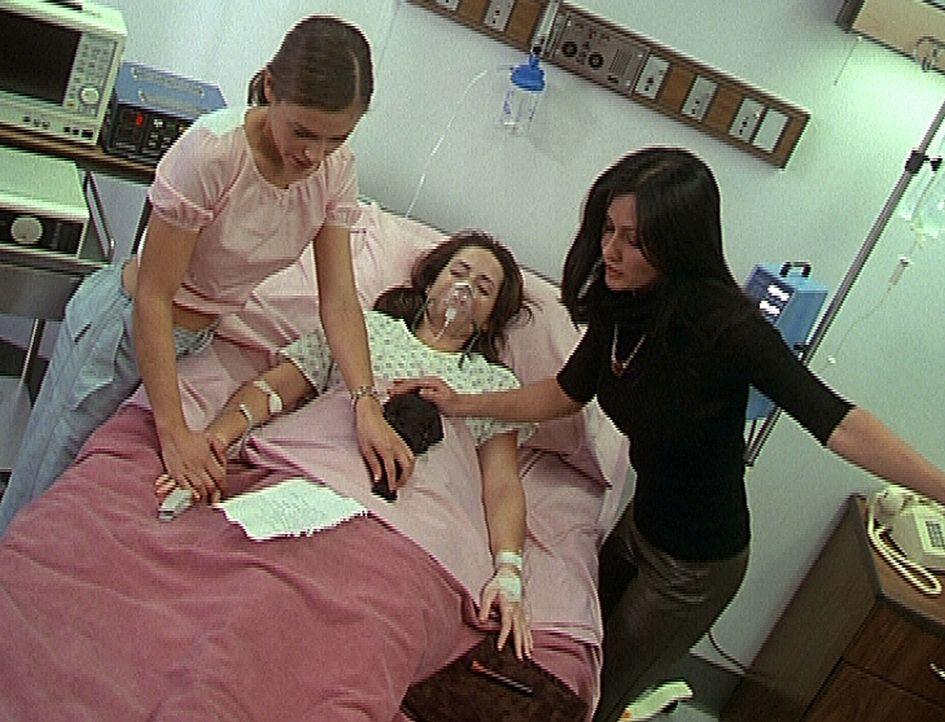 Phoebe (Alyssa Milano, l.) und Prue (Shannen Doherty, r.) versuchen, ihre Schwester Piper (Holly Marie Combs, M.) durch einen Zauberspruch wieder au... - Bildquelle: Paramount Pictures