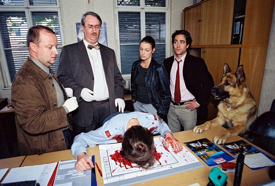 Fritz Kunz (Martin Weinek, l.), Dr. Graf (Gerhard Zemann, 2.v.l.), Niki (Elke Winkens, 2.v.r.) und Marc (Alexander Pschill, r.) untersuchen die Poli... - Bildquelle: Ali Schafler Sat.1