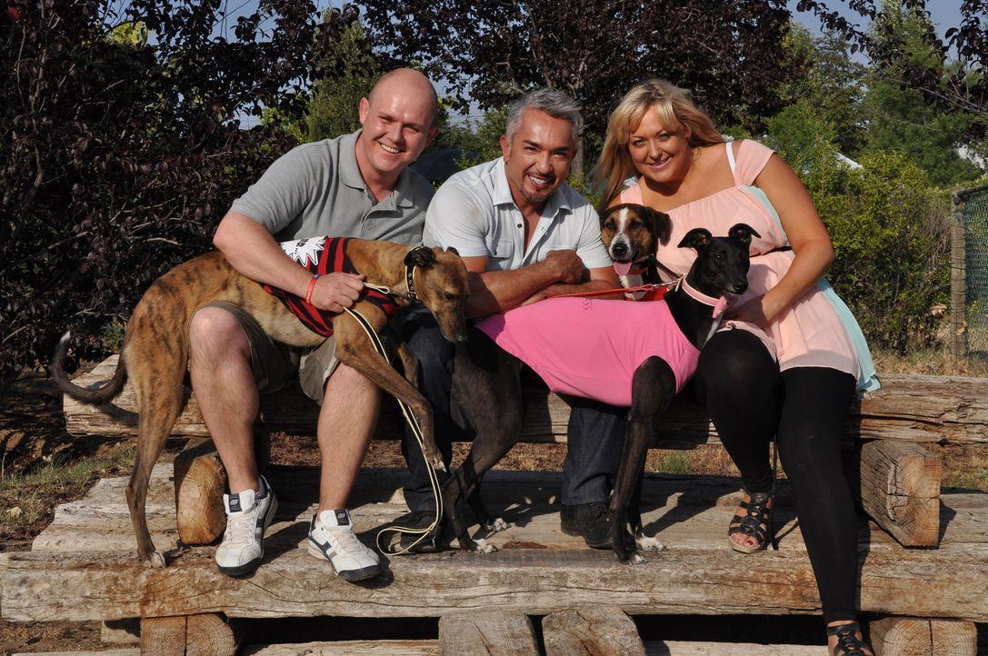 Harry scheint sich mit Cesar (M.), Daniela (r.), Mike (l.) und deren zwei Windhunden sehr wohl zu fühlen ... - Bildquelle: Belén Ruiz Lanzas 360 Powwow, LLC / Belén Ruiz Lanzas