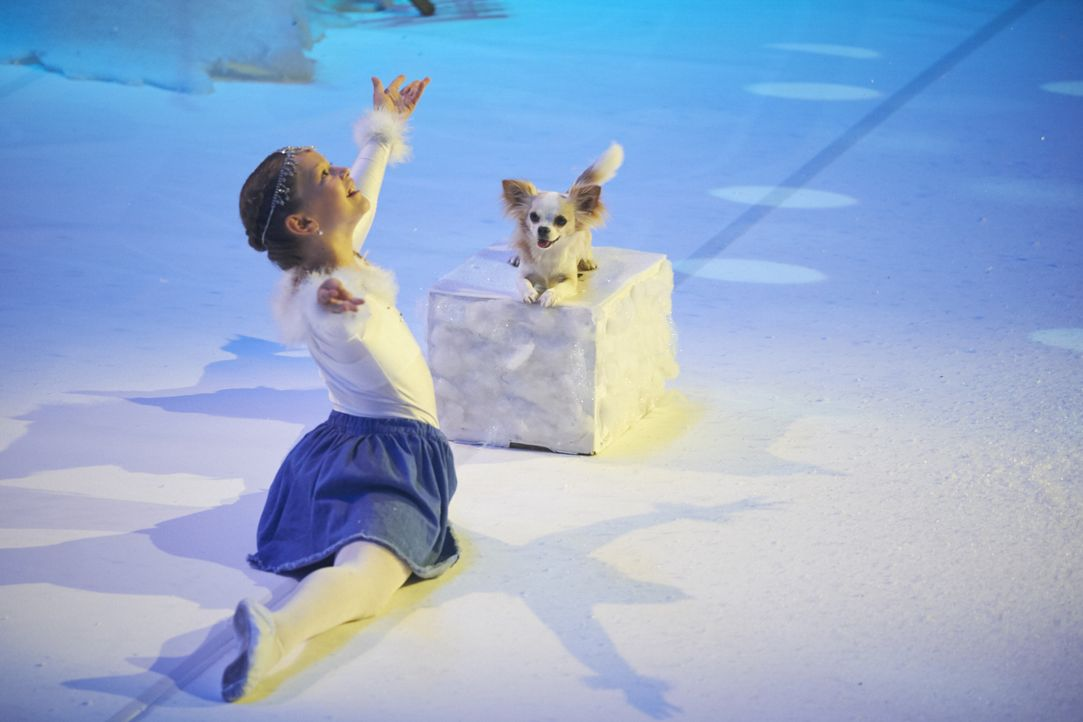 Mit ihrer Performance möchte Stefanie Loosli aus der Schweiz die Jury beeindrucken. Doch wird sie das schaffen? - Bildquelle: Stefan Hobmaier SAT.1