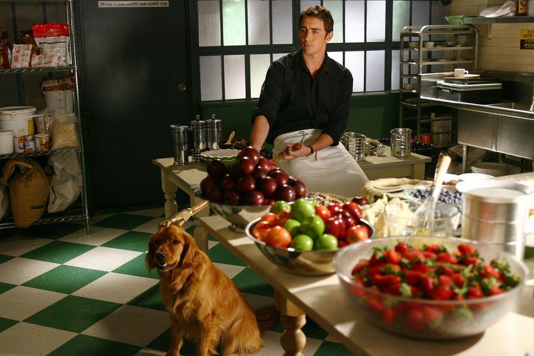 Ned (Lee Pace) kann nicht nur verfaulte Früchte wieder genießbar machen, sondern auch tote Menschen zum Leben erwecken ... - Bildquelle: Warner Brothers