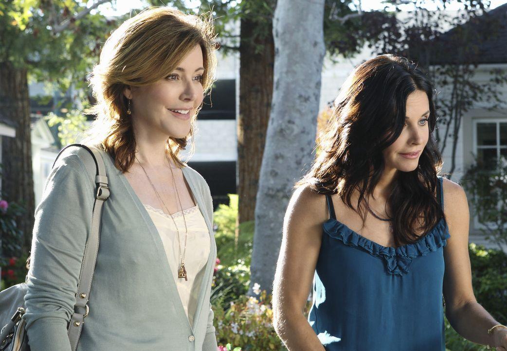 Ellie (Christa Miller, l.) kann es nicht fassen und ist eifersüchtig, dass Jules (Courteney Cox, r.) ihre Probleme nur noch mit Glenn bespricht ... - Bildquelle: 2010 ABC INC.