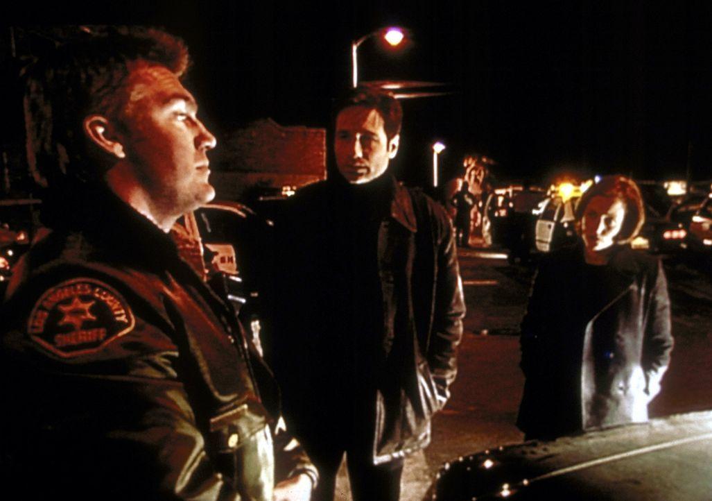 Mulder (David Duchovny, M.) und Scully (Gillian Anderson, r.) bezweifeln, dass Deputy Wetzel (Judson Mills, l.) von einer Gang überfallen worden ist. - Bildquelle: TM +   2000 Twentieth Century Fox Film Corporation. All Rights Reserved.