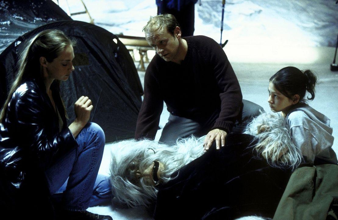Charlie (Ines Nieri, r.), Tim (Oliver Stokowski, M.) und Chris (Sophie von Kessel, l.) können den schwer verletzten Yeti im Naturkundemuseum ausfind... - Bildquelle: Leslie Haslam ProSieben