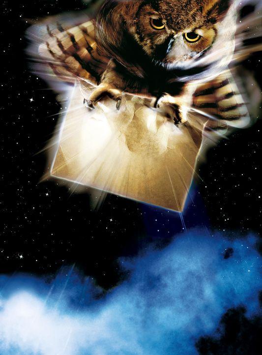 """""""HARRY POTTER UND DER STEIN DER WEISEN"""" - Artwork - Bildquelle: Warner Bros. Pictures"""