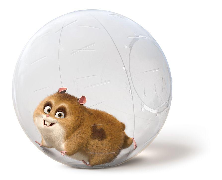 """Dino, der fernsehbesessene Hamster ist ein großer Fan der Serie """"Bolt"""". Als er den Serienstar persönlich kennenlernt ist er völlig aus dem Häusc... - Bildquelle: Disney Enterprises, Inc.  All rights reserved"""