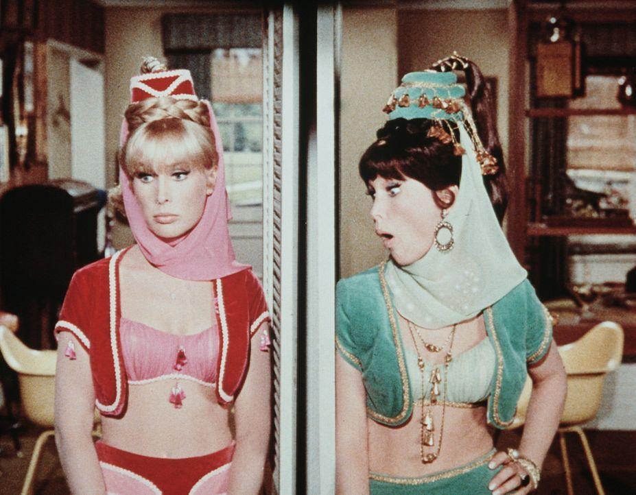 Jeannie (Barbara Eden) hat den Fehler begangen, ihre Schwester - die ihr gleicht wie ein Ei dem anderen - aus Bagdad herzuzaubern. - Bildquelle: Columbia Pictures
