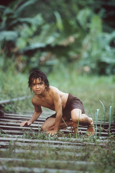 Als der kleine Mowgli (James Williams) zum ersten Mal in Kontakt mit der Zivilisation und anderen Menschen kommt, droht ihm große Gefahr: Der Engl - Bildquelle: MDP WORLDWIDE