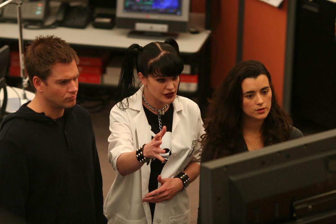 Als in einer Kühlbox ein Kopf eines Navy Captains gefunden wurde, beginnt für Abby (Pauley Perrette, M.), DiNozzo (Michael Weatherly, l.) und Ziva... - Bildquelle: CBS Television