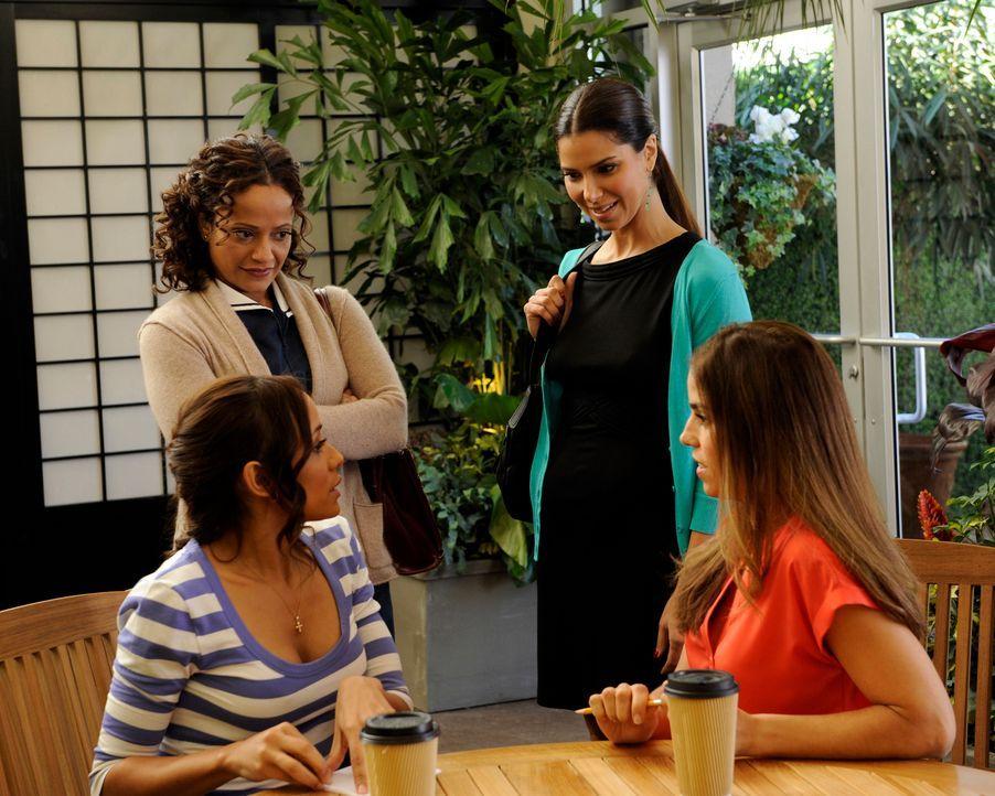 Rosie (Dania Ramirez, vorne l.) und Marisol (Ana Ortiz, vorne r.) versuchen, vor Carmen (Roselyn Sanchez, hinten r.) und Zoila (Judy Reyes, hinten l... - Bildquelle: ABC Studios
