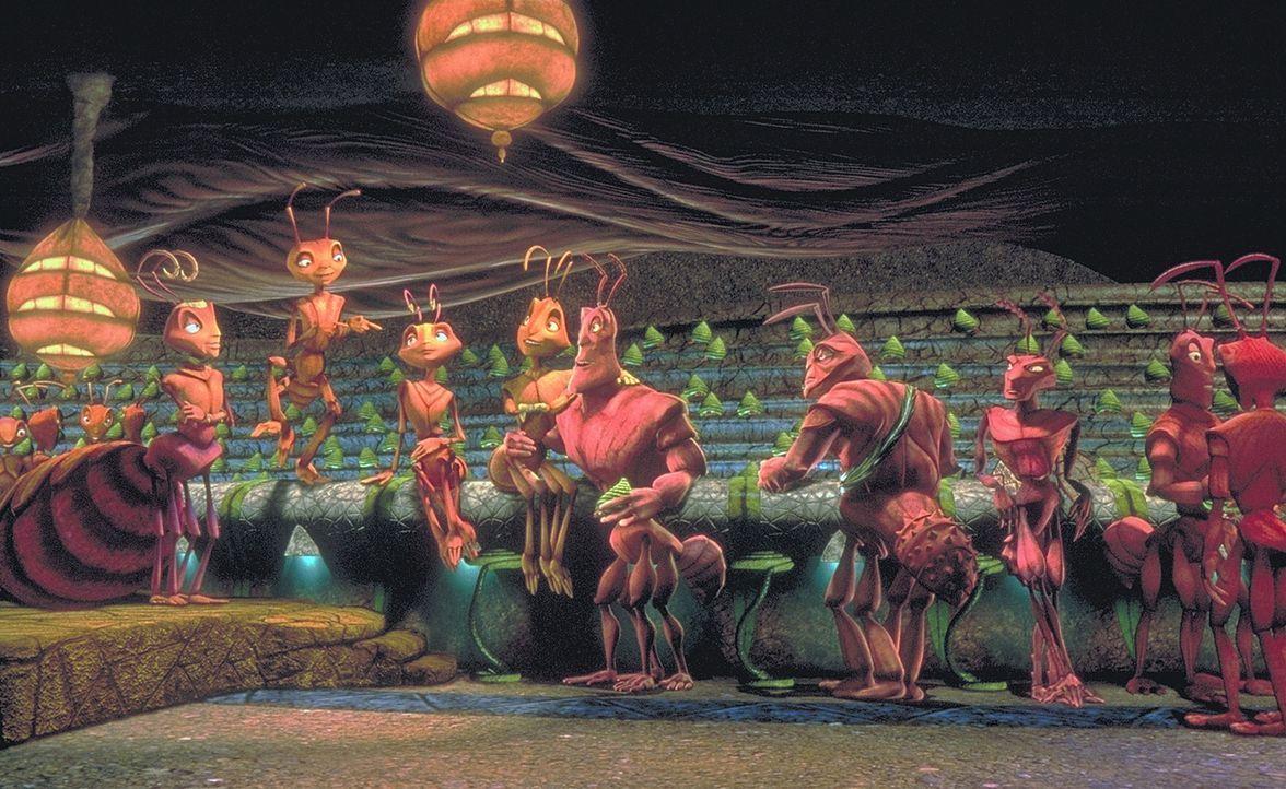 Wer im Gleichschritt, in Reih und Glied lebt, hat ausgesorgt. Doch Z (2.v.li.) will mehr ... - Bildquelle: DreamWorks Distribution LLC