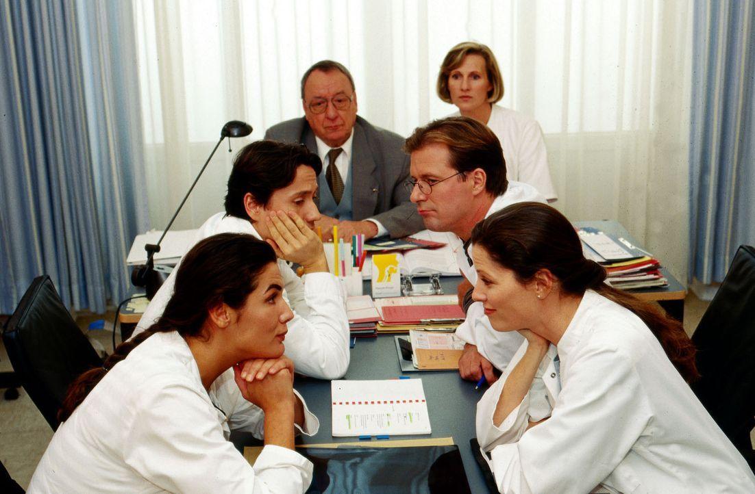 Dr. Markus Kampmann (Ulrich Reinthaller, M.l.) fragt die Kollegen, wer denn den Dackel der kleinen Alina übernehmen könnte. Das Mädchen leidet unter... - Bildquelle: Krajewsky Sat.1