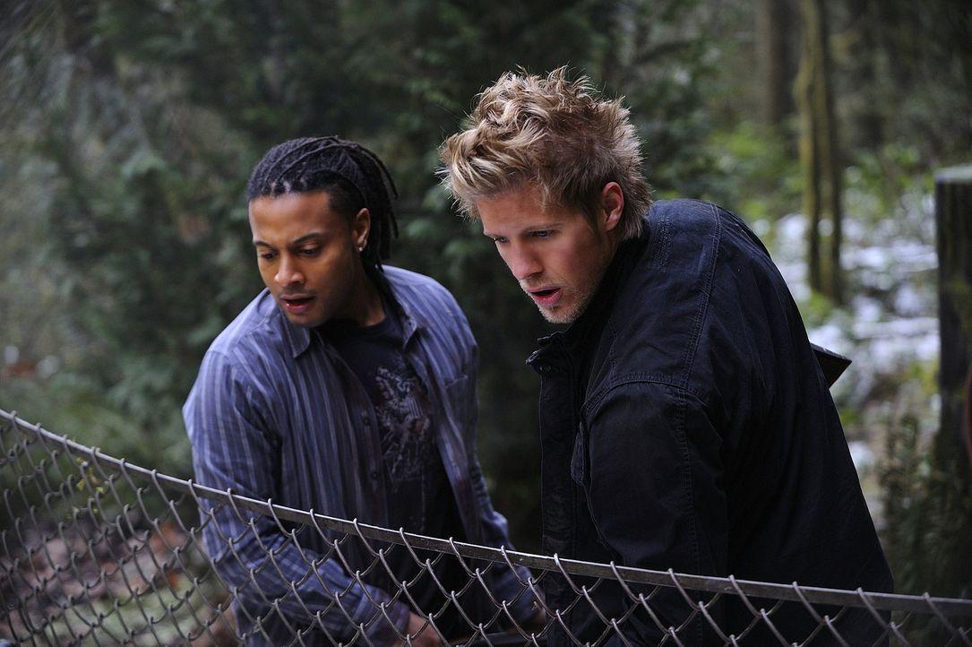 Der Kampf ums Überleben auf Harper's Island geht weiter: Danny (Brandon Jay McLaren, l.) und Sully (Matt Barr, r.) ... - Bildquelle: 2009 CBS Studios Inc. All Rights Reserved.