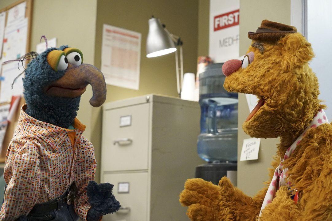 Fozzie Bär (r.) ist auf eine Party bei Jay Leno eingeladen. Gonzo (l.) glaubt allerdings, dass dies nur eine Spammail war ... - Bildquelle: Eric McCandless ABC Studios