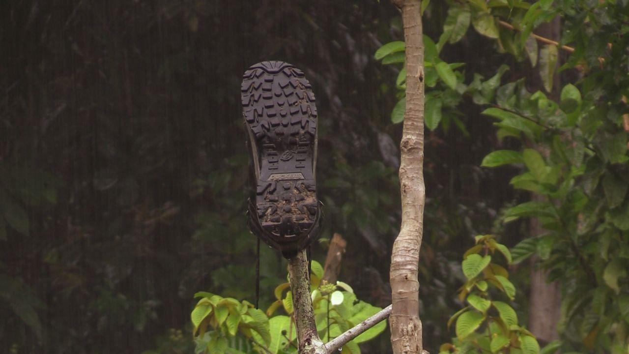 Sumatra 8 - Bildquelle: kabel eins