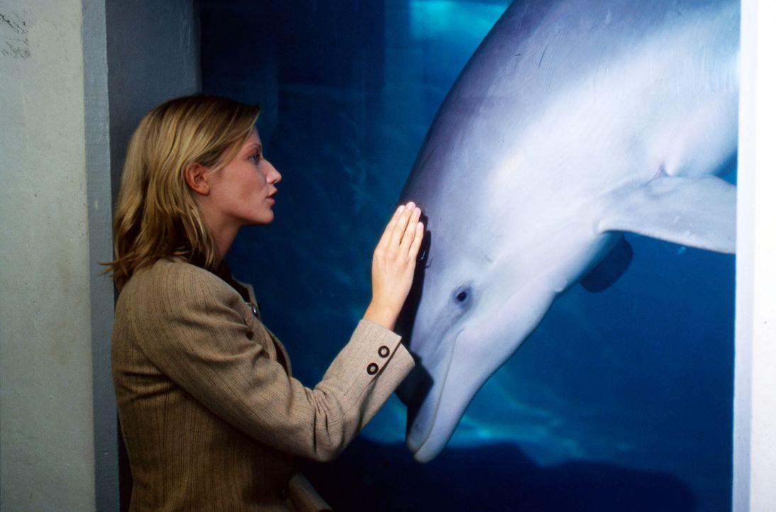 Nach der Operation besucht Anna (Doreen Jacobi) Michael im Delphinarium und geht dort auf Tuchfühlung mit den klugen Meeressäugern. - Bildquelle: Kasia Adamik Sat.1