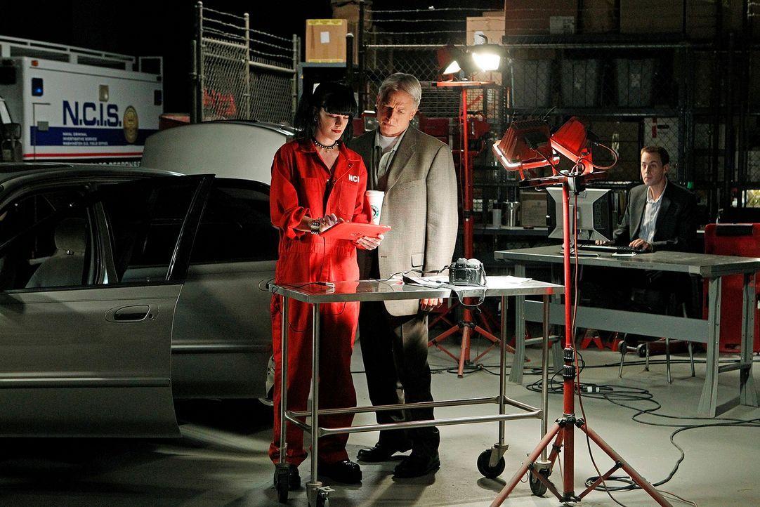 Versuchen, einen neuen Fall zu lösen: Gibbs (Mark Harmon, M.), Abby (Pauley Perette, l.) und McGee (Sean Murray, r.) ... - Bildquelle: CBS Television