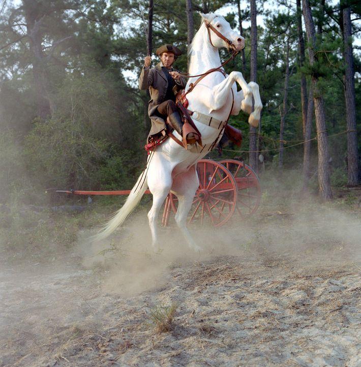 General Sam Houstons (Dennis Quaid) Armee und die Streitkräfte der mexikanisch-texanischen Truppen sehen sich einer blutigen Schlacht gegenüber ... - Bildquelle: Disney - ABC International Television