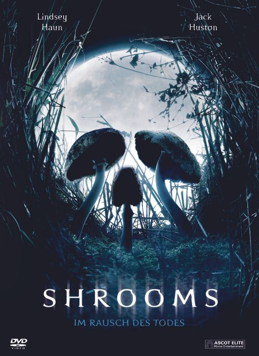 Shrooms - Plakatmotiv