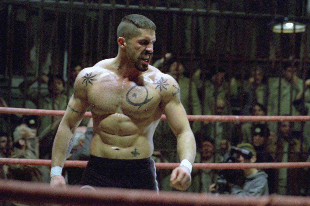 Der böse Knast-Champion Yuri Boyka (Scott Adkins) sorgt mit seinen Boxkämpfen für klingelnde Kassen in der Unterwelt, die Wetten auf seine Kämpf... - Bildquelle: Nu Image Films